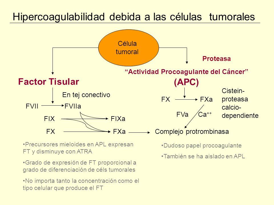 Hipercoagulabilidad debida a las células tumorales