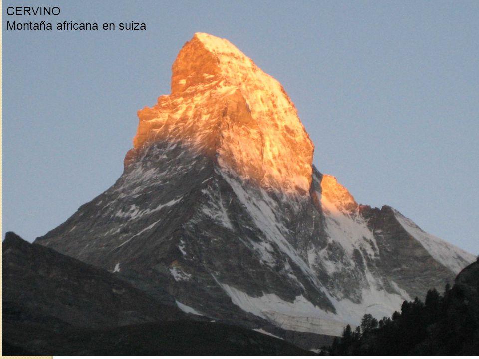 CERVINO Montaña africana en suiza