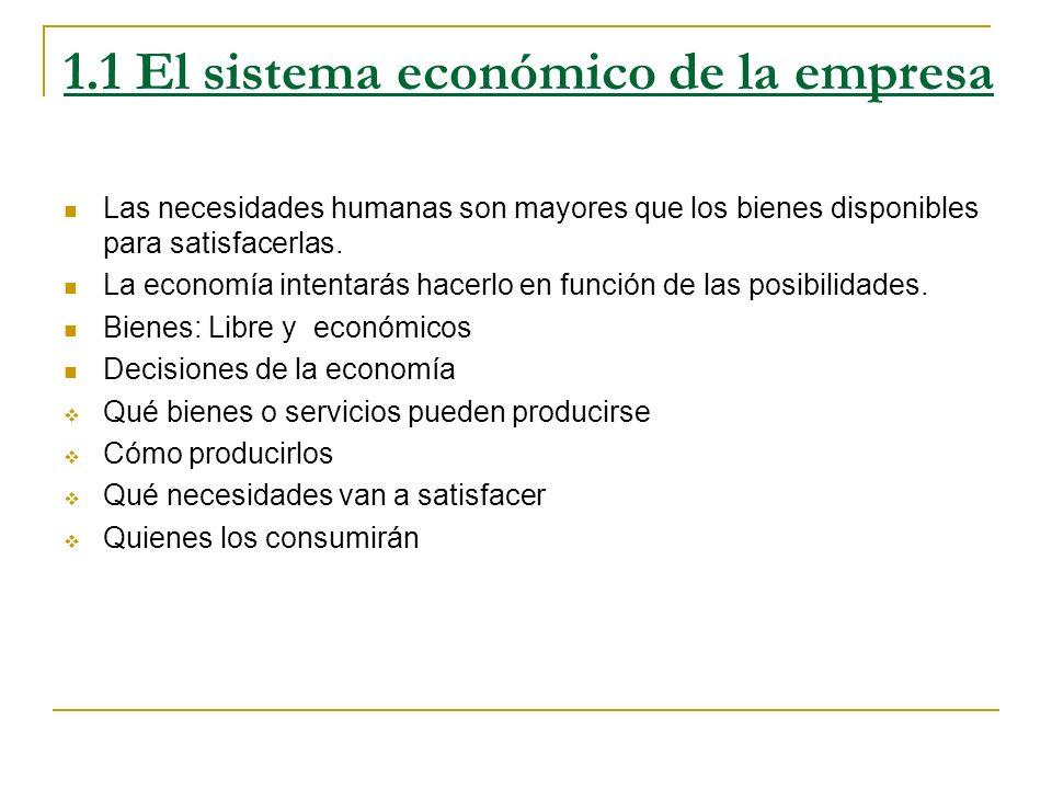 1.1 El sistema económico de la empresa