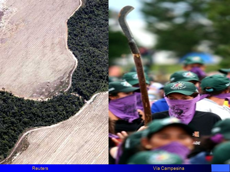 Reuters Vía Campesina