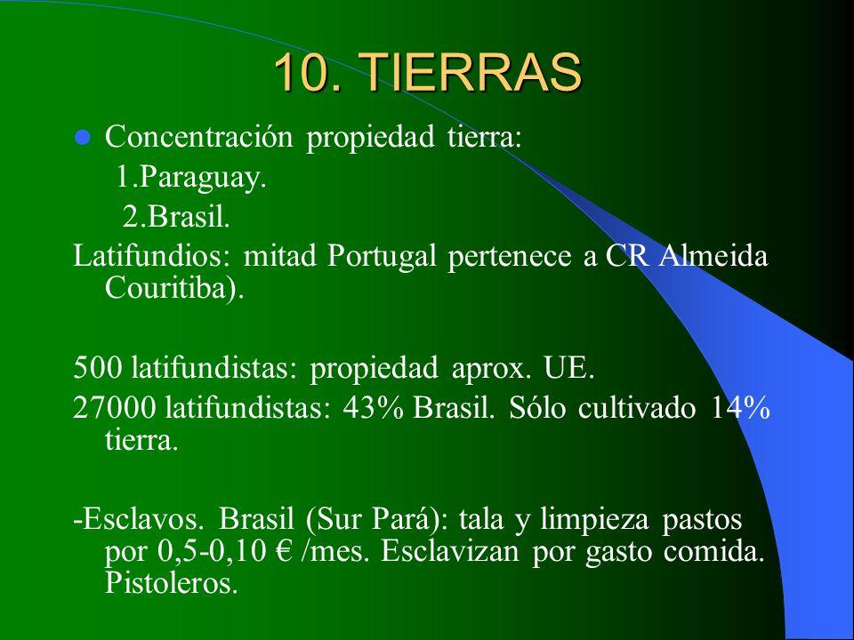 10. TIERRAS Concentración propiedad tierra: 1.Paraguay. 2.Brasil.