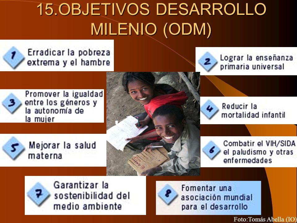 15.OBJETIVOS DESARROLLO MILENIO (ODM)