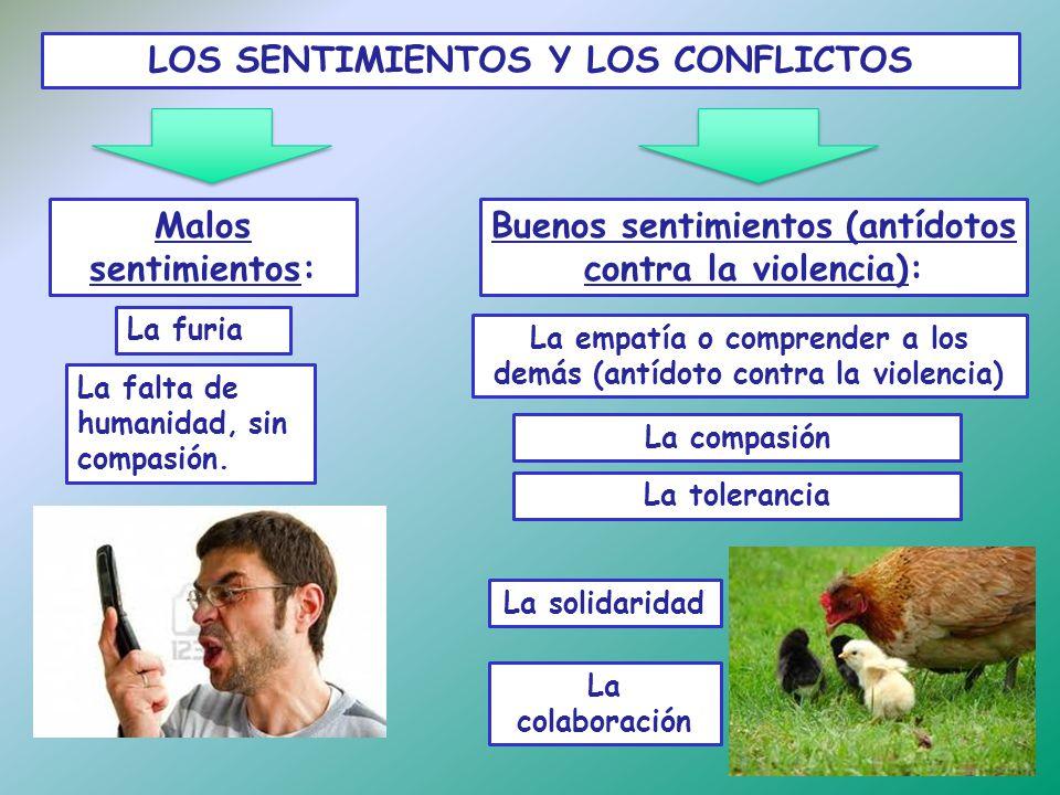 Seguridad Social Furia Latina