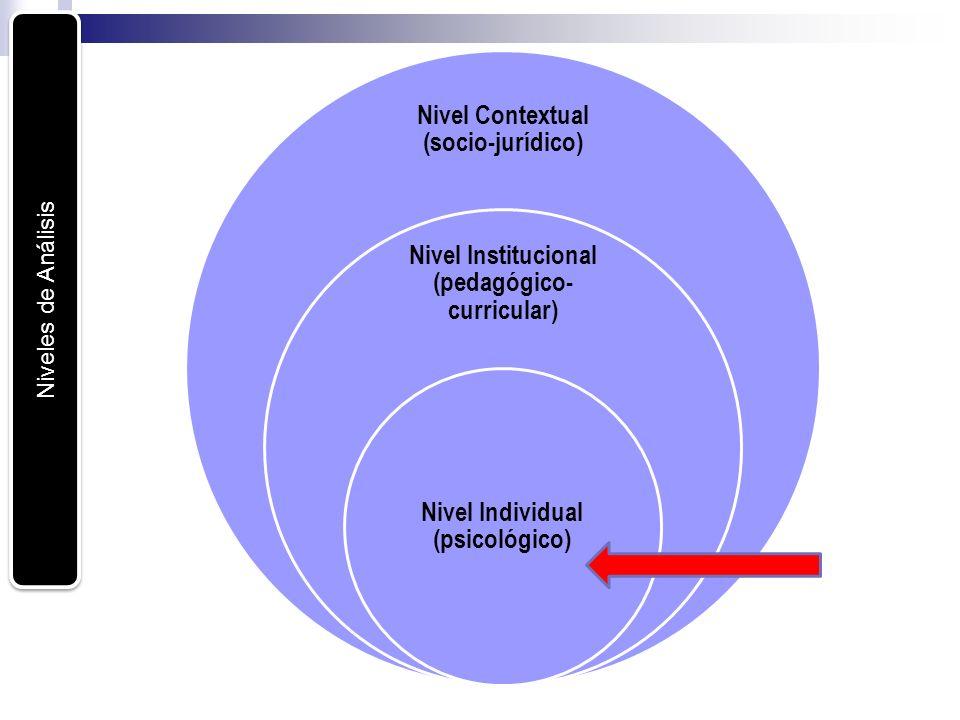 Nivel Contextual (socio-jurídico)
