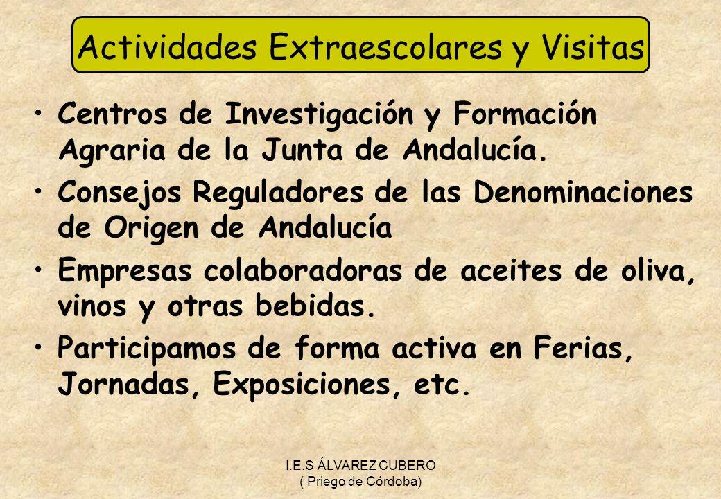 Actividades Extraescolares y Visitas