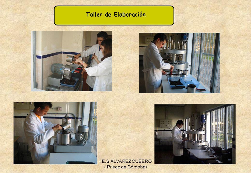 I.E.S ÁLVAREZ CUBERO ( Priego de Córdoba)