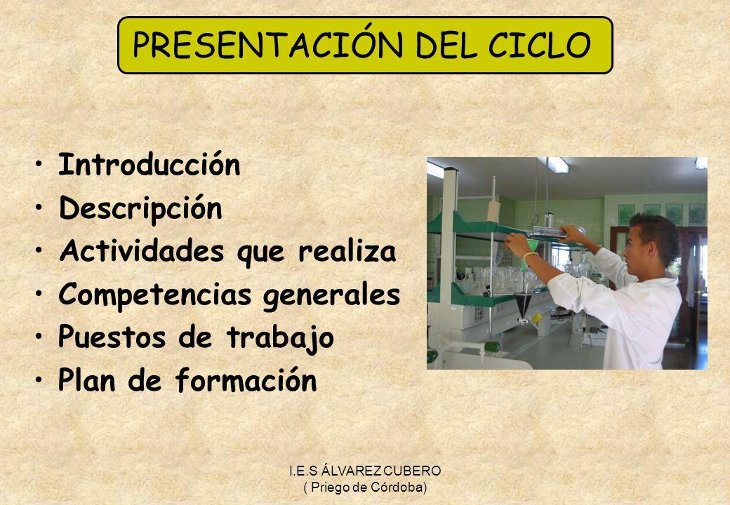 PRESENTACIÓN DEL CICLO