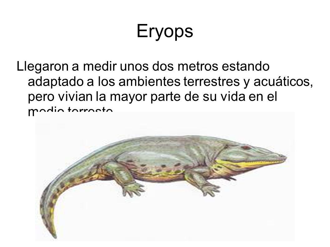 Eryops