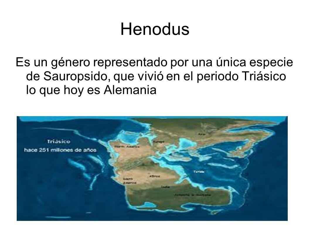 Henodus Es un género representado por una única especie de Sauropsido, que vivió en el periodo Triásico lo que hoy es Alemania.