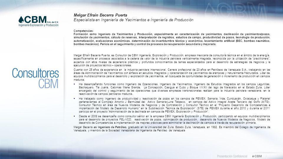 Somos una empresa mexicana de consultoría especializada en las ...