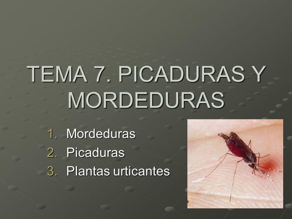 TEMA 7. PICADURAS Y MORDEDURAS