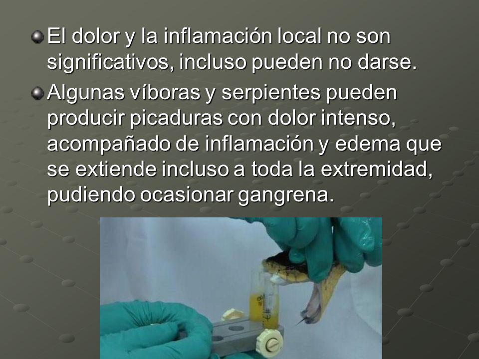 El dolor y la inflamación local no son significativos, incluso pueden no darse.