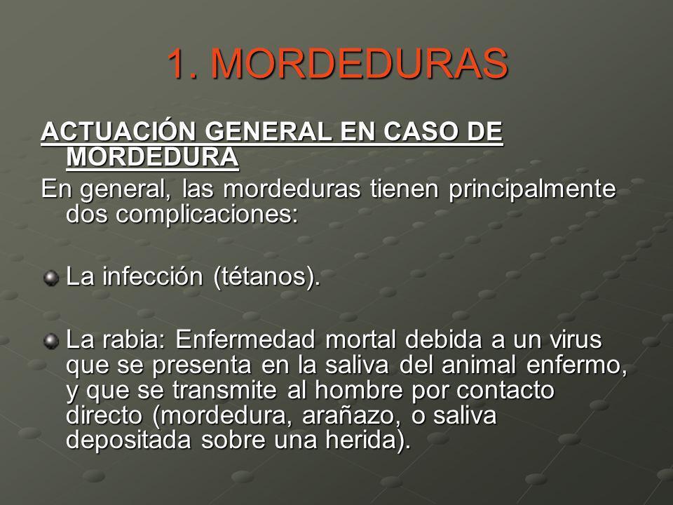 1. MORDEDURAS ACTUACIÓN GENERAL EN CASO DE MORDEDURA