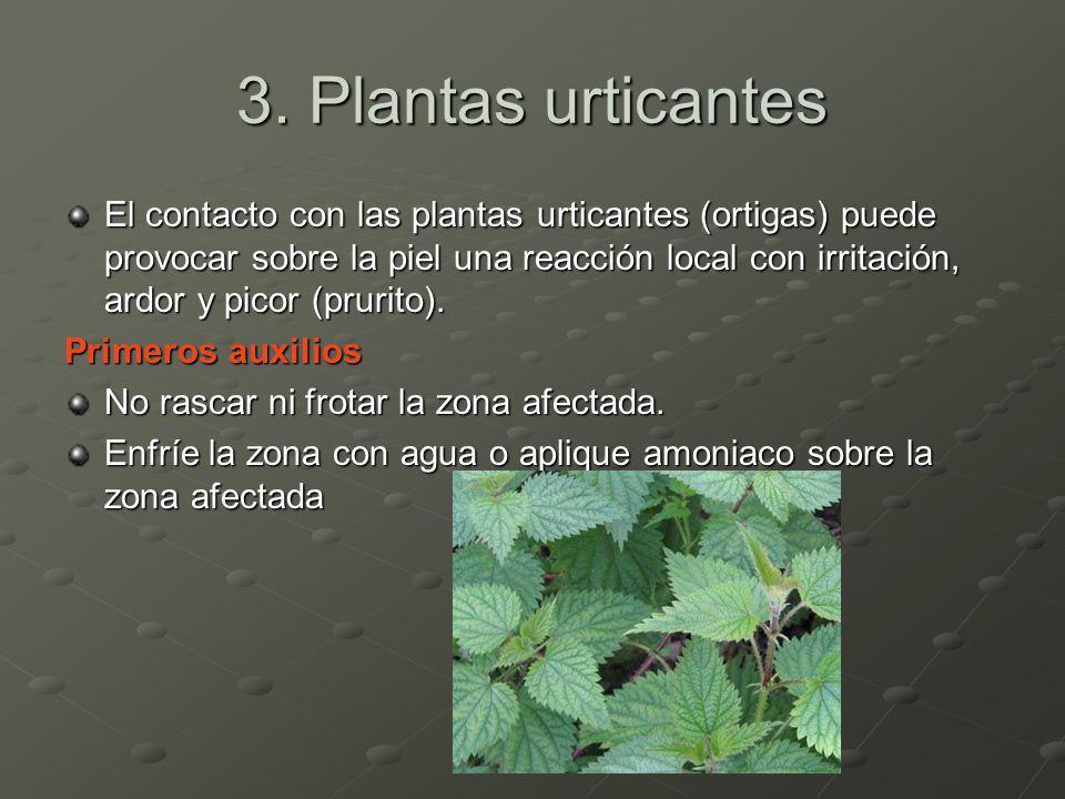 3. Plantas urticantes