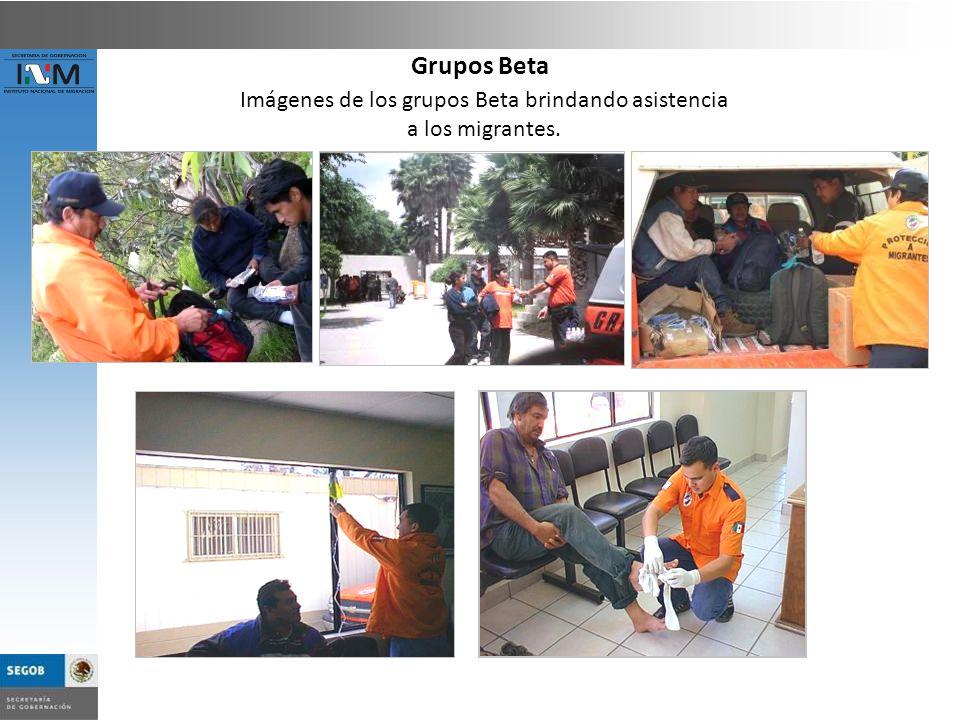 Imágenes de los grupos Beta brindando asistencia
