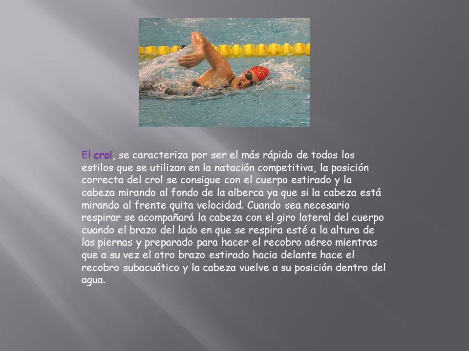 El crol, se caracteriza por ser el más rápido de todos los estilos que se utilizan en la natación competitiva, la posición correcta del crol se consigue con el cuerpo estirado y la cabeza mirando al fondo de la alberca ya que si la cabeza está mirando al frente quita velocidad.