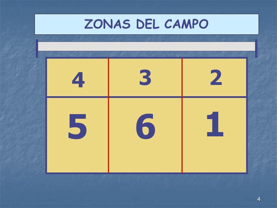 ZONAS DEL CAMPO 3 2 4 1 5 6