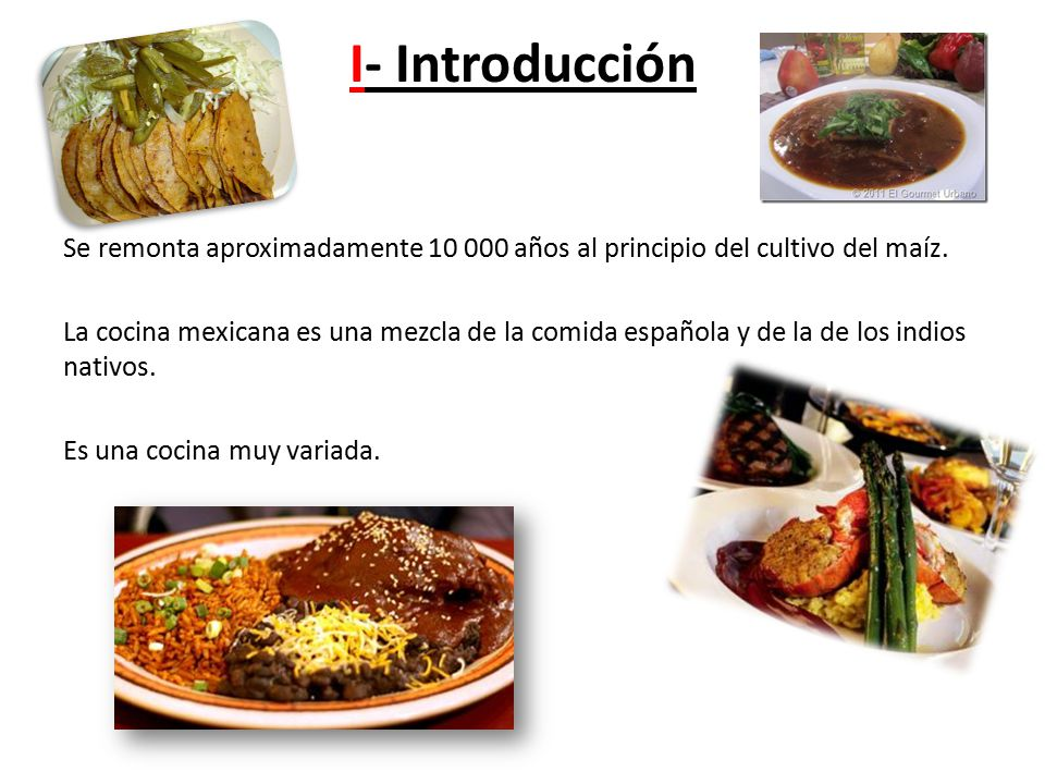 La gastronomia mexicana ppt video online descargar Introduccion a la gastronomia pdf
