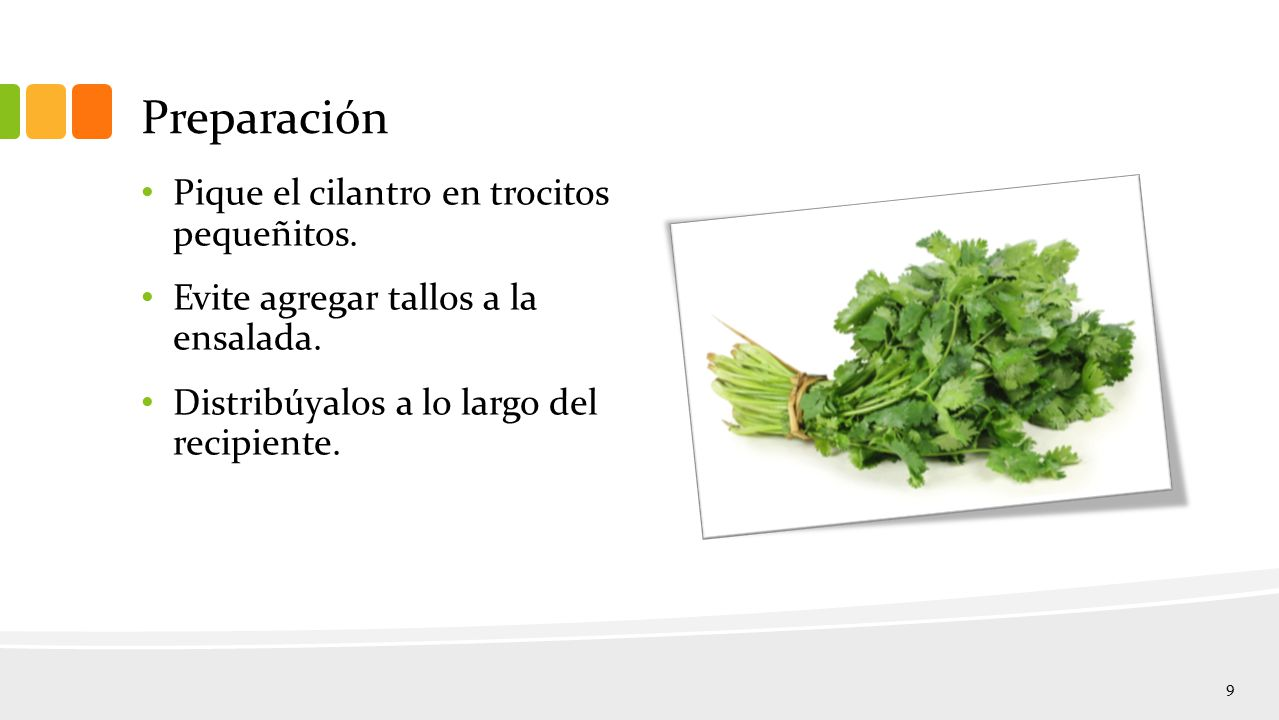Preparación Pique el cilantro en trocitos pequeñitos.
