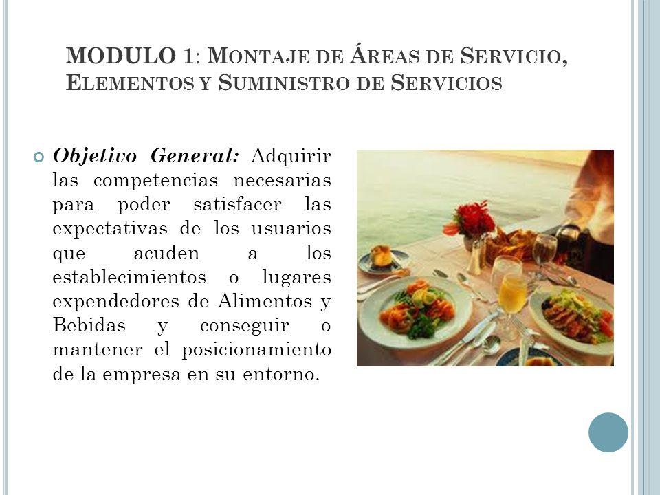 MODULO 1: Montaje de Áreas de Servicio, Elementos y Suministro de Servicios
