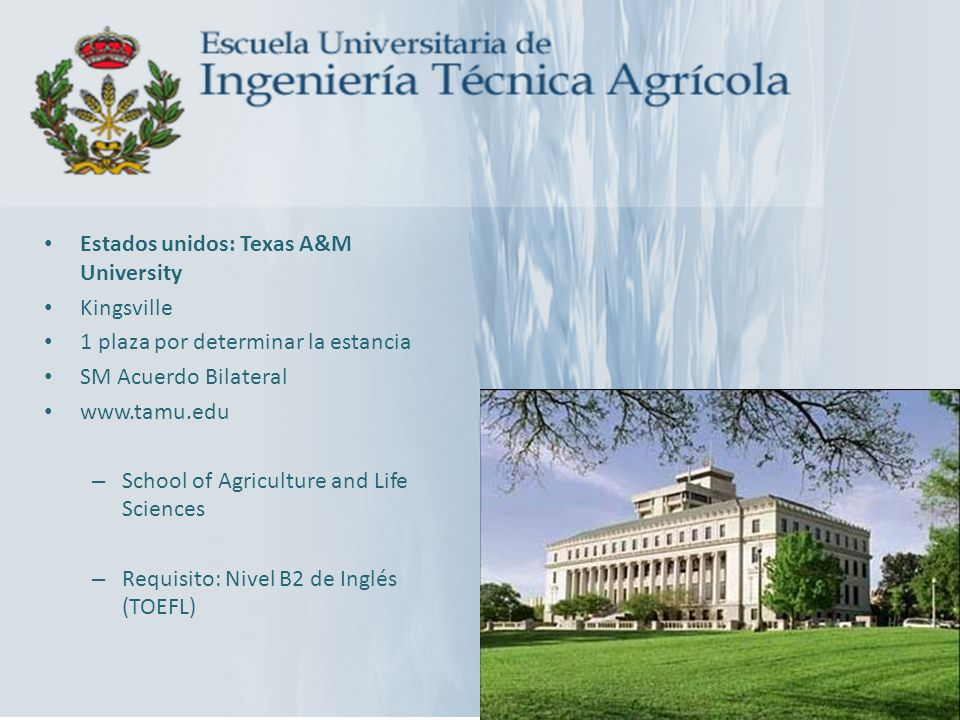 Estados unidos: Texas A&M University