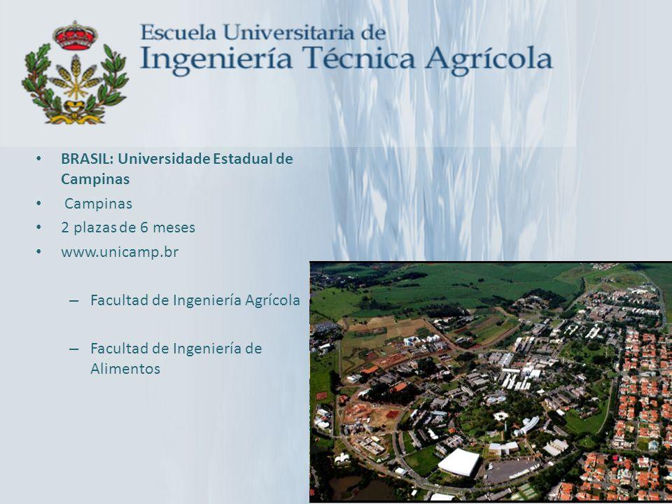 BRASIL: Universidade Estadual de Campinas