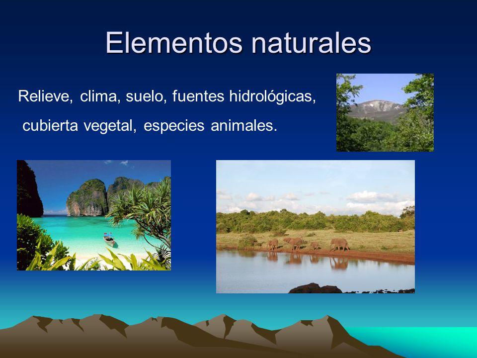 El espacio geogr fico ppt video online descargar for Que elementos conforman el suelo