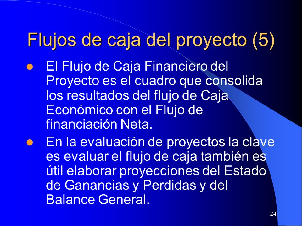 Flujos de caja del proyecto (5)
