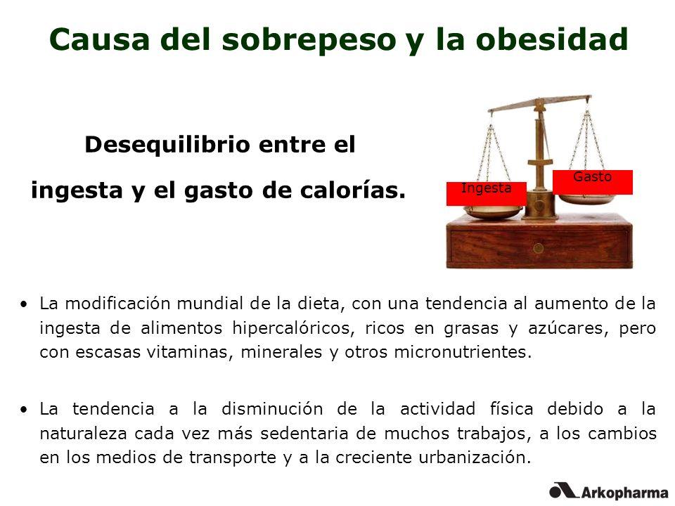Causa del sobrepeso y la obesidad
