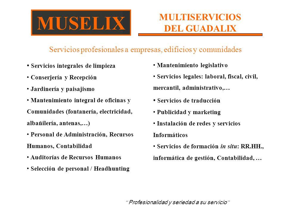 Multiservicios del guadalix ppt video online descargar for Empresas de paisajismo