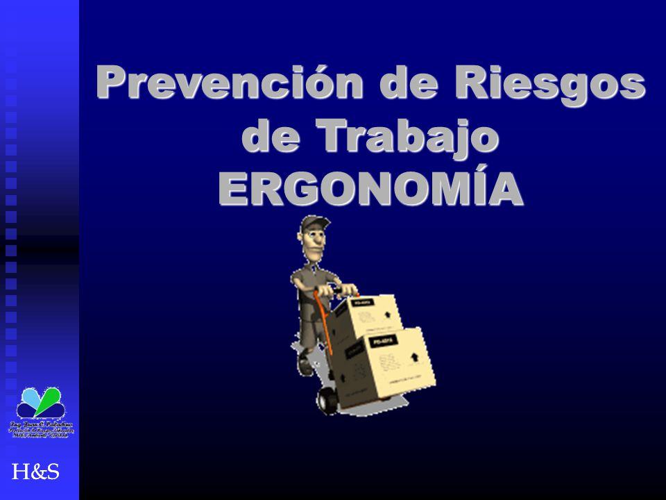 Prevención de Riesgos de Trabajo ERGONOMÍA