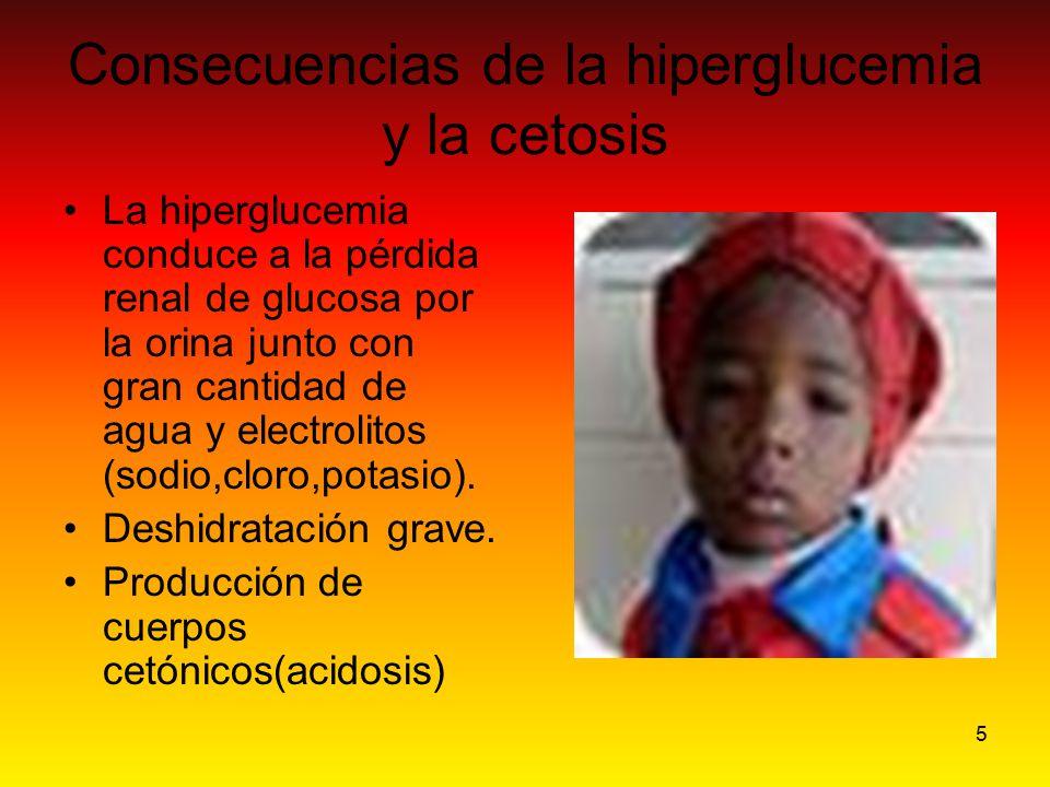 Consecuencias de la hiperglucemia y la cetosis