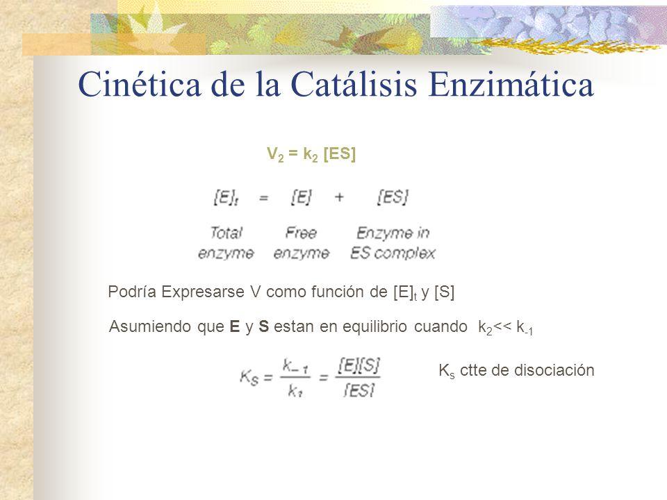 catalisis enzimatica Developments and trends in enzyme catalysis in nonconventional media sajja hari krishna ak-technische chemie und biotechnologie, institut fu¨r chemie und biochemie, universita¨t greifswald.