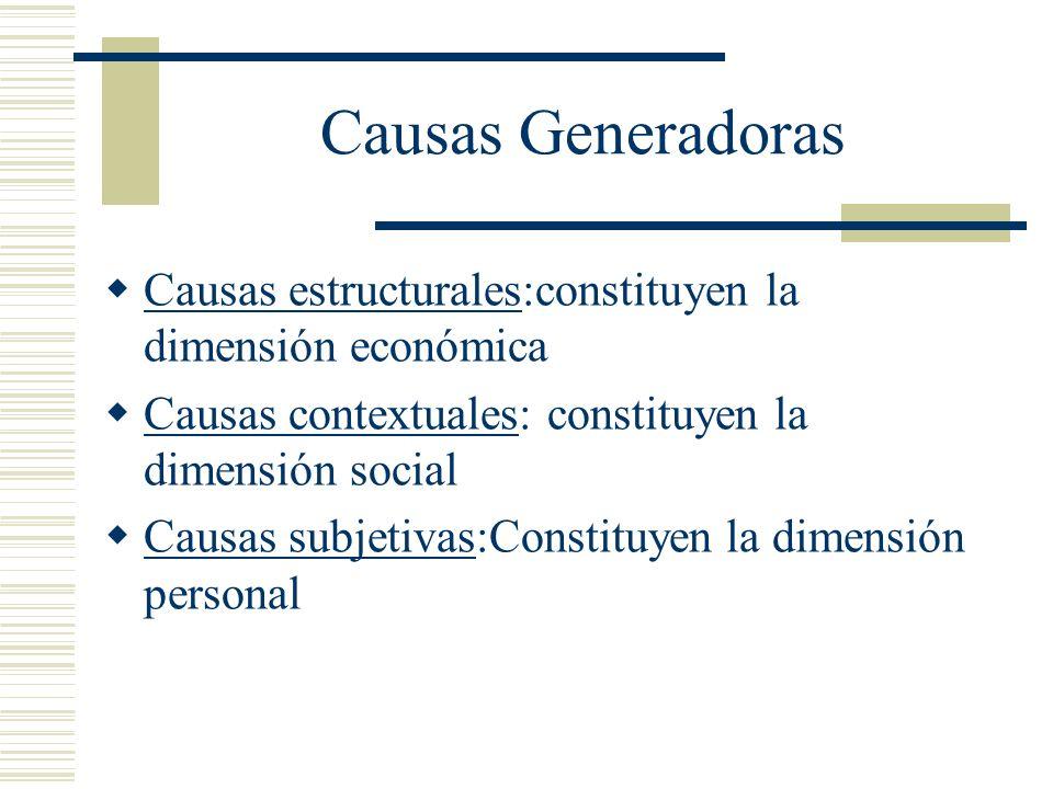 Causas Generadoras Causas estructurales:constituyen la dimensión económica. Causas contextuales: constituyen la dimensión social.