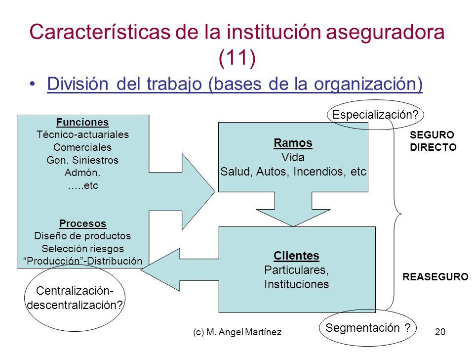 Características de la institución aseguradora (11)