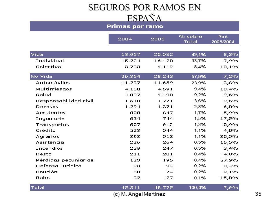 SEGUROS POR RAMOS EN ESPAÑA