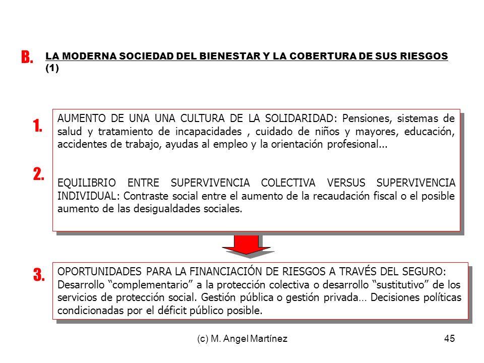B. LA MODERNA SOCIEDAD DEL BIENESTAR Y LA COBERTURA DE SUS RIESGOS (1)