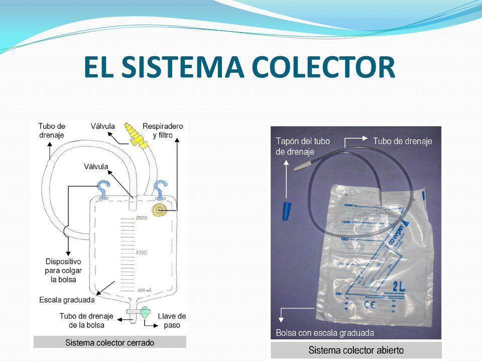 EL SISTEMA COLECTOR