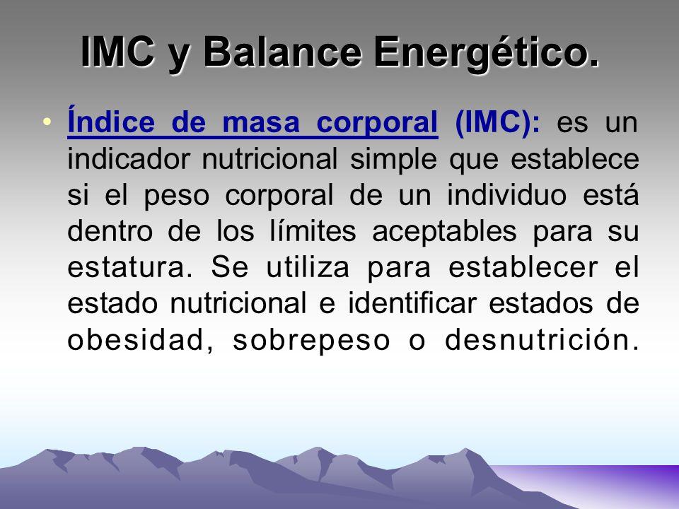 Tasa Metabólica Basal. IMC y balance energético. - ppt
