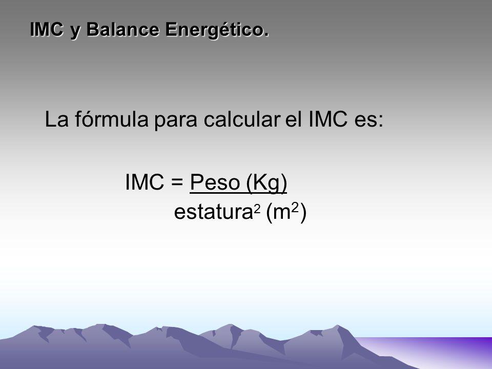 IMC y Balance Energético.