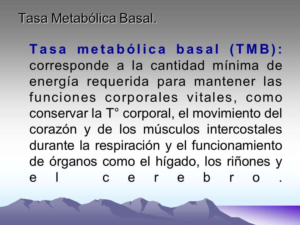 Tasa Metabólica Basal.