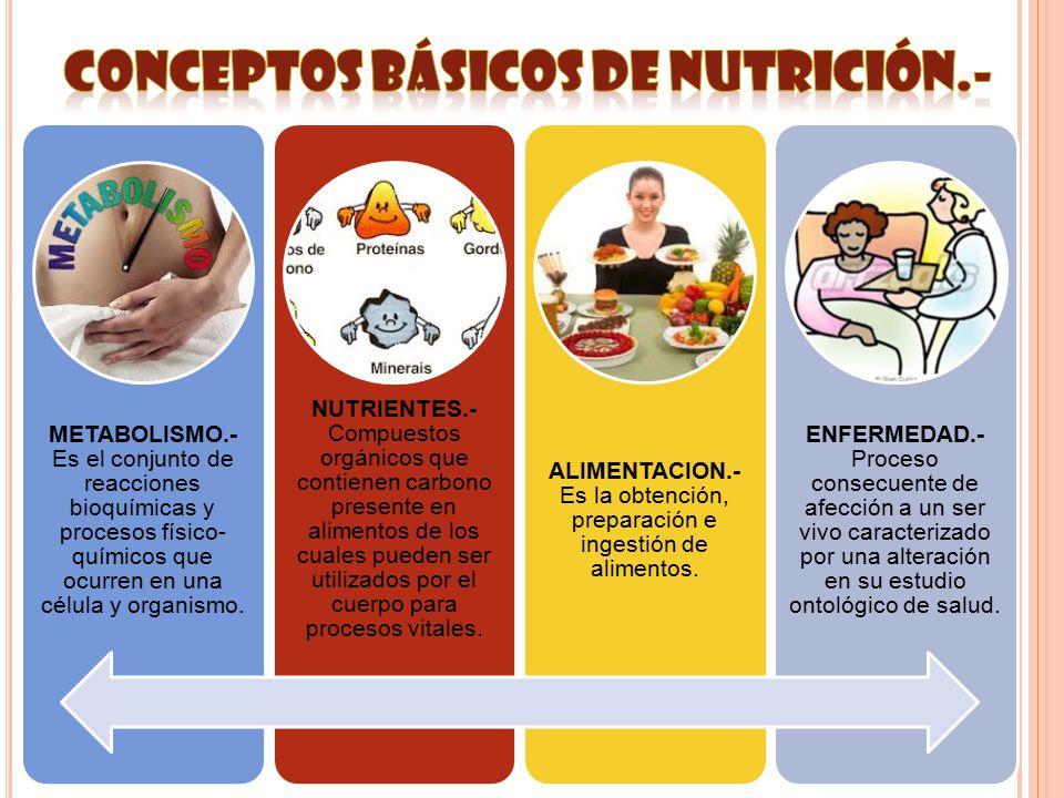 CONCEPTOS BÁSICOS DE Nutrición.-