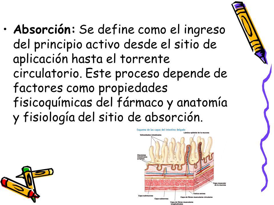 Excepcional Cómo Define La Anatomía Adorno - Anatomía de Las ...