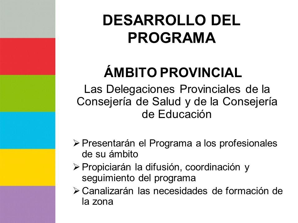 DESARROLLO DEL PROGRAMA