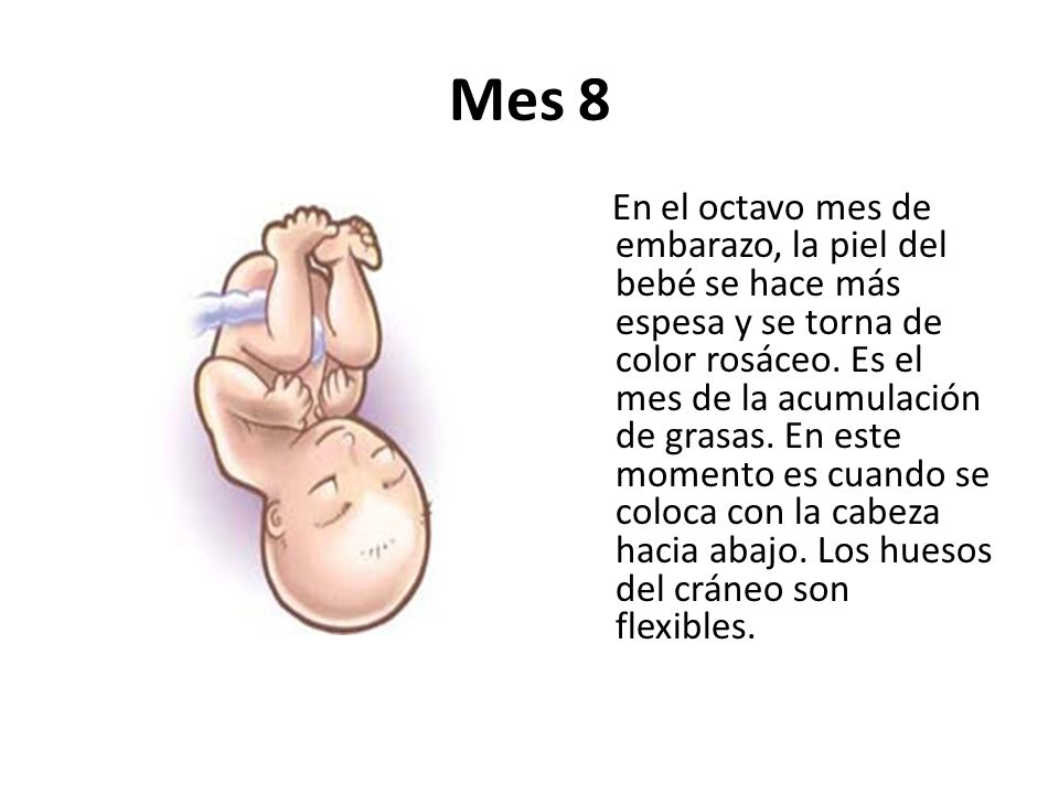 El embarazo ppt video online descargar - 8 meses de embarazo ...