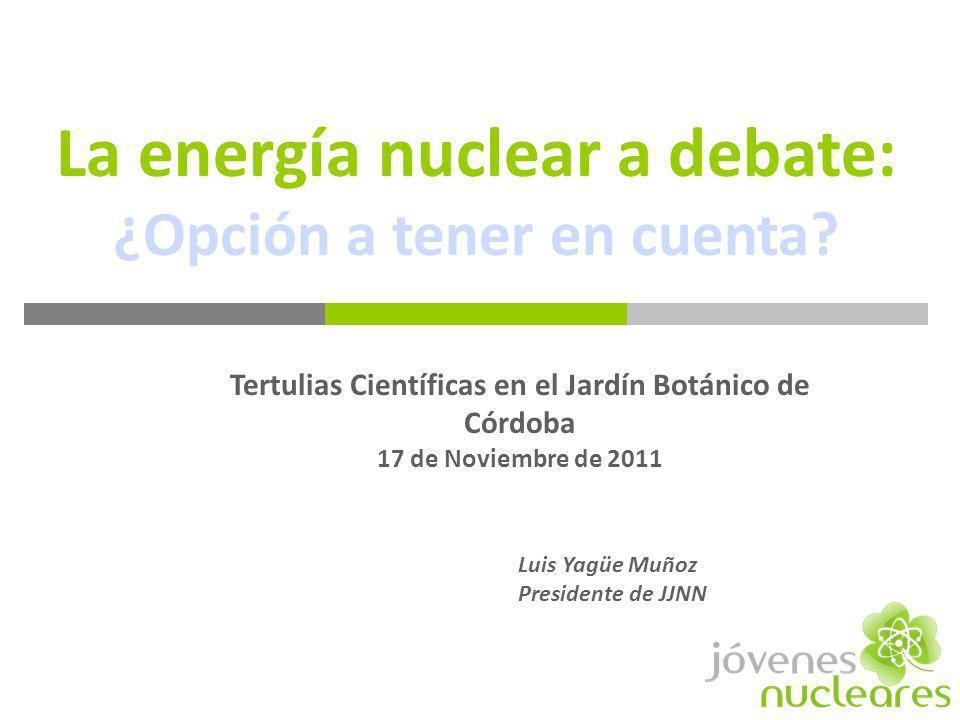 La energía nuclear a debate: ¿Opción a tener en cuenta
