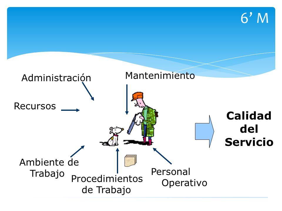 6' M Calidad del Servicio Mantenimiento Administración Recursos