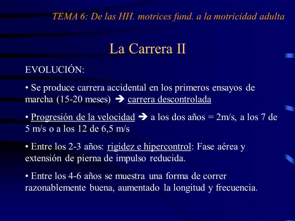 La Carrera II TEMA 6: De las HH. motrices fund. a la motricidad adulta