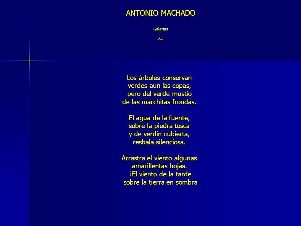 ANTONIO MACHADO Galerías XC