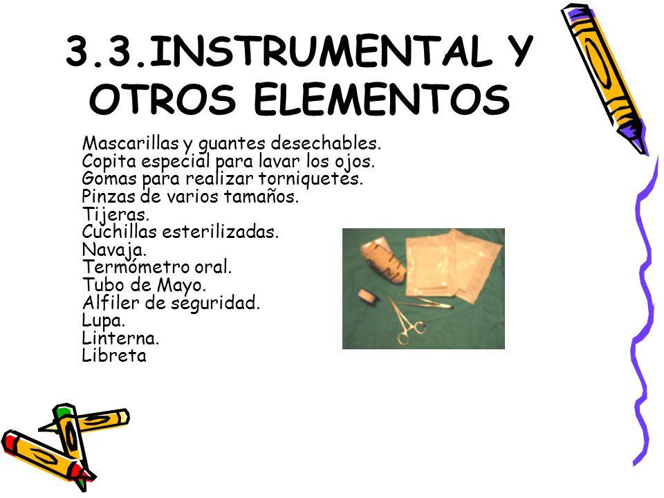 3.3.INSTRUMENTAL Y OTROS ELEMENTOS